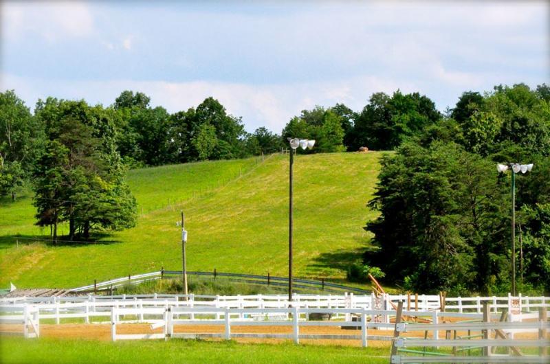 Stonegate Farm Boarding